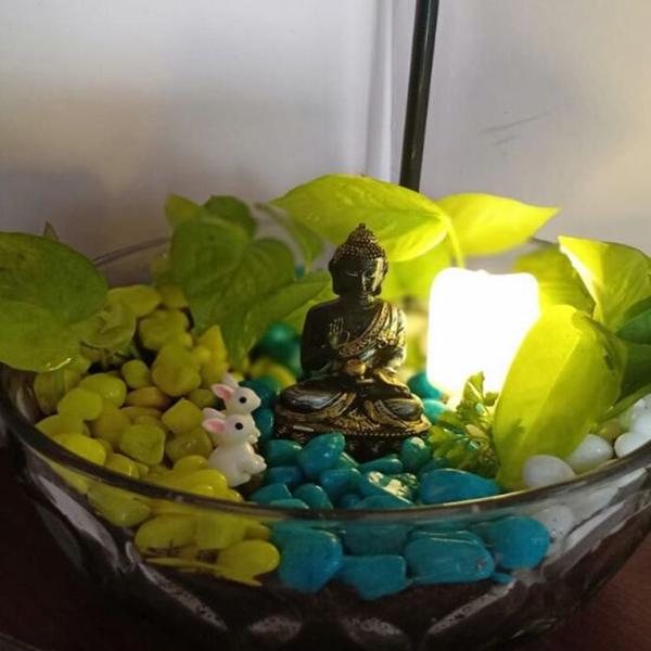 Open Bowl Terrarium with Miniature